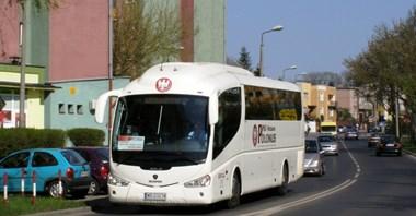 Polonus: Rynek autobusowy to nie tylko bilet za 1zł