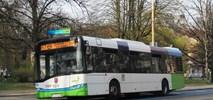 Szczecin unieważnia przetarg na 20 autobusów. Będzie kolejny