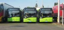 Solaris inwestuje 45 mln złotych w rozbudowę fabryki