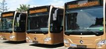 Świebodzice z nowym autobusem od EvoBusa?