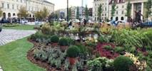 Warszawa. Zielone place, a pod nimi parkingi? Taki jest plan ratusza