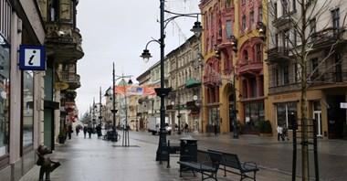 Pierwsze polskie auta bez kierowcy wyjadą na Piotrkowską?