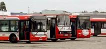 Solbus wyprodukuje autobusy dla Częstochowy?