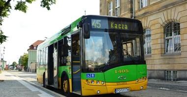 W Poznaniu sześciolatki za darmo autobusem
