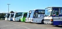 Busiarze górą. Ministerstwo zabetonuje wolny rynek autobusowy?
