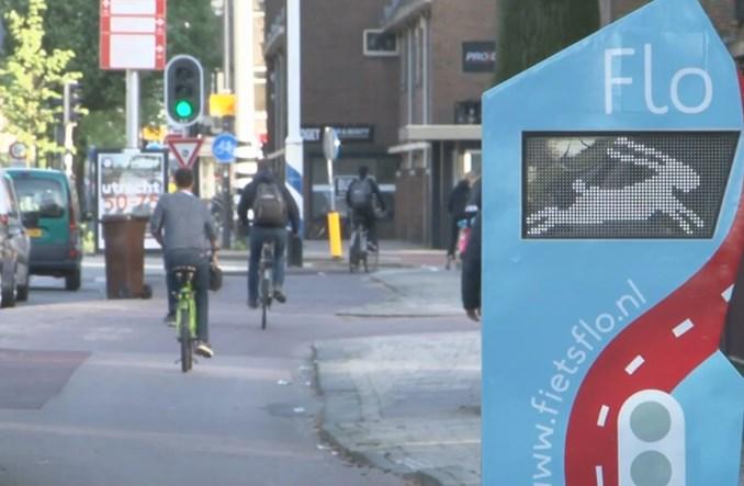 Utrecht. Znaki dla rowerzystów? Zając, żółw, lajk i… krowa