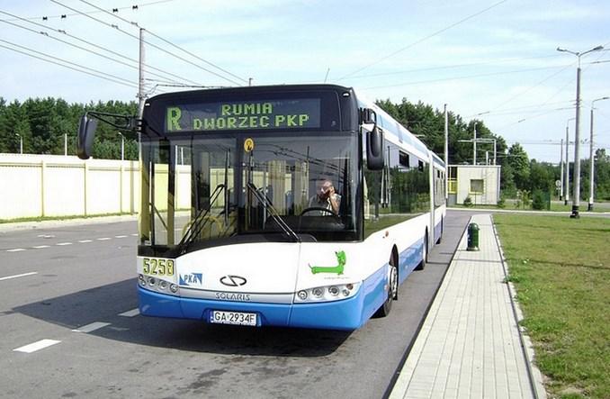 ZKM Gdynia szuka przewoźnika dla czterech linii autobusowych