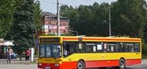Grudziądz kupuje kolejne cztery autobusy
