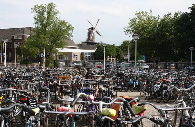 Holendrzy badają ruch rowerowy. Rowerzyści liczą się sami