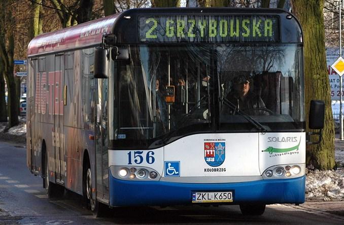 Kołobrzeg kupuje osiem autobusów z krótkim terminem dostaw