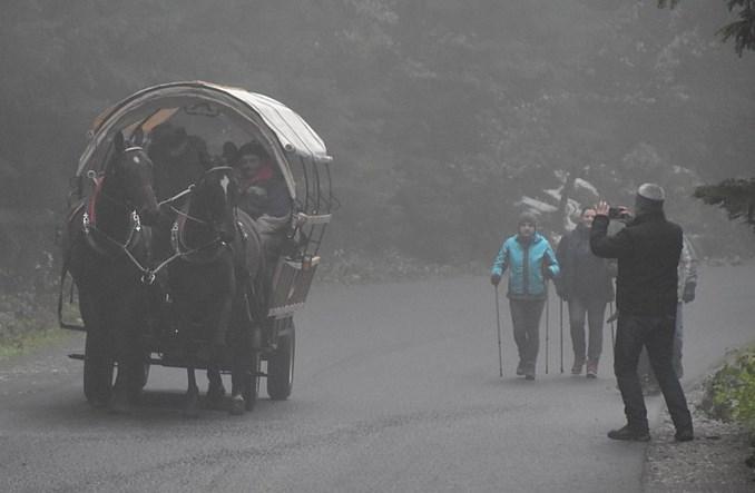 Elektrowóz w służbie koniom. Testy na trasie do Morskiego Oka