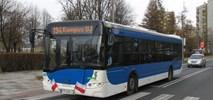Kraków po raz kolejny kupuje 15 autobusów MIDI