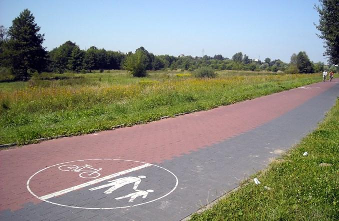 GUS bada długość dróg rowerowych w powiatach