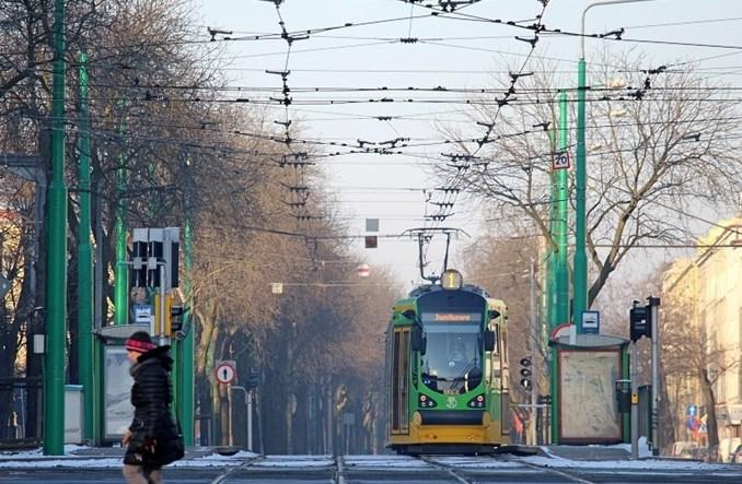 Poznań: Pierwszy dwukierunkowy Moderus Beta na trasie