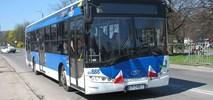 Kraków. Solaris i EvoBus walczą w przetargu na 60 autobusów