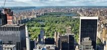 Polskie miasta likwidują parki, choć za granicą ich przybywa