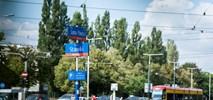 Warszawa: Strefę parkowania trzeba przygotować na elektryki