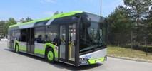Piła ogłosiła przetarg na sześć autobusów hybrydowych
