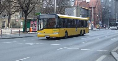 Gliwice awaryjnie chcą wydzierżawić siedem autobusów na pół roku