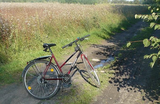 Śląsk wprowadza standardy rowerowe