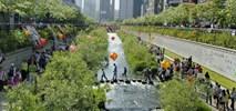 Jak w środku Seulu zbudowano rzekę