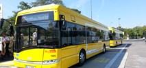 """Cztery """"gadżeciarskie"""" elektryczne Solaris Urbino jeżdżą po Berlinie"""
