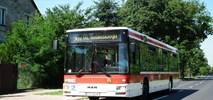 Suchy Las kupuje cztery niskopodłogowe autobusy