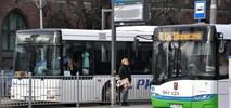 Autobusy na telefon ruszą w Szczecinie