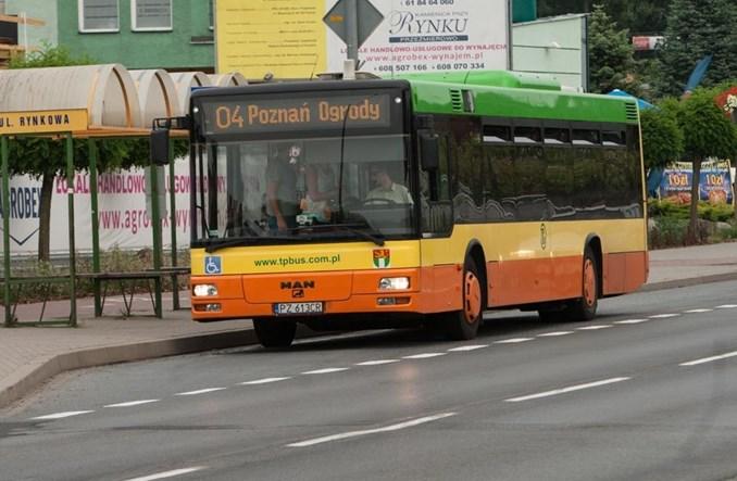 Tarnowo Podgórne. Problemy z kupowaniem autobusów. Drogi MAN