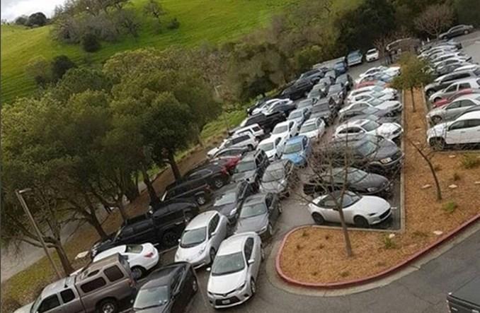 Pracownicy Elona Muska nie mieszczą się na parkingu Tesli