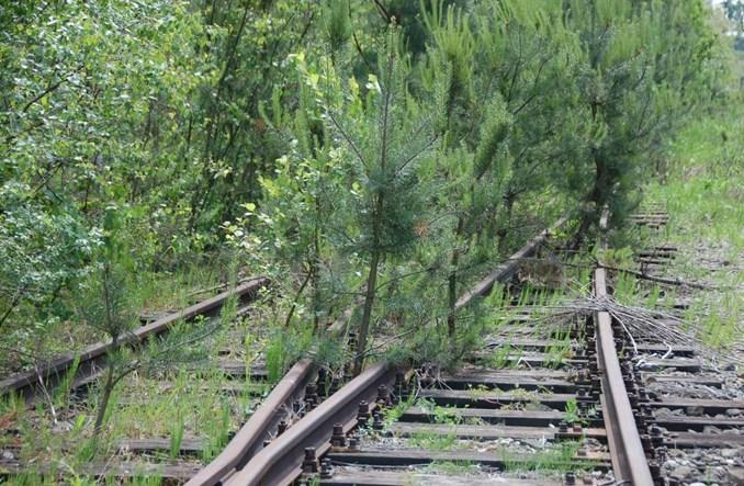 """Jest szansa na przywrócenie kolei """"małym ojczyznom"""""""