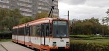 Łódź: M8C wycofane z linii pabianickiej