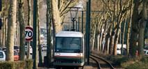 Lille: Podmiejski tramwaj, który przetrwał