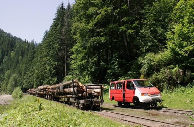 Rumunia: Wąskotorowym busem w Karpaty