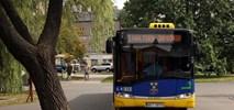 Pabianice: Będą nowe autobusy i drogi rowerowe