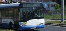 Gdynia: Elektrobusy z wykorzystaniem trakcji trolejbusowej, ale bez nowych odcinków
