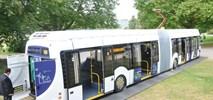 InnoTrans 2016. Elektrobusy z Niemiec, Holandii i... Białorusi