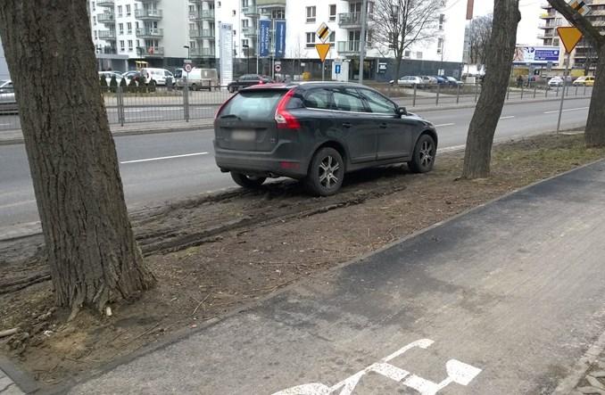Warszawa. 8 hektarów trawników rozjechanych przez auta w 2015 r.