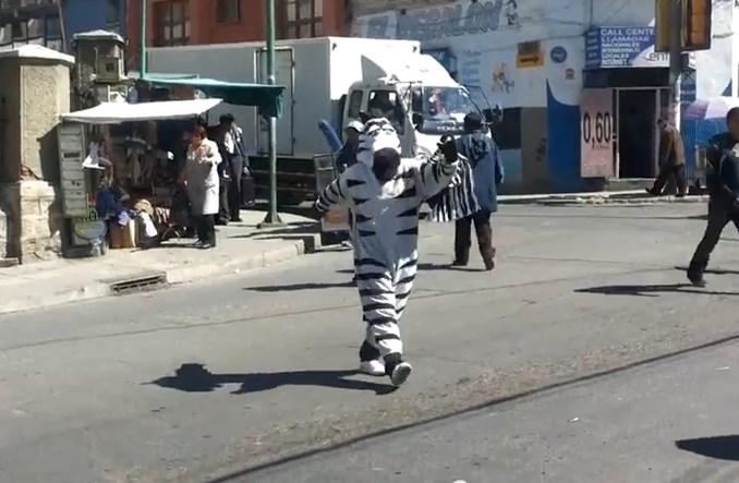 """Czy """"zebry"""" znikną z przejść dla pieszych w La Paz?"""