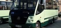 Wągrowiec z ofertami na dostawę hybryd, mini-elektryka i spalinowego autobusu